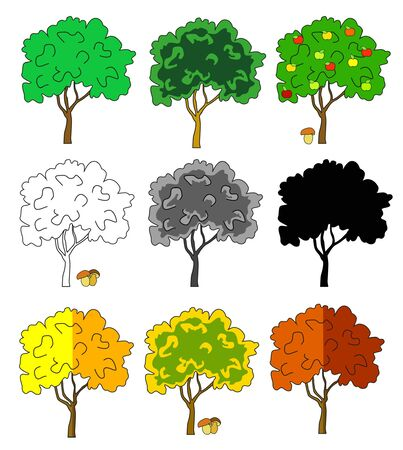 Season trees collection spring summer and oak Illustration