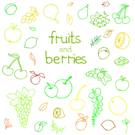Collection of cartoon juicy fruits and berry. Vector illustration. Set of colorful fruit and berry icons. Isolated on white. Fruit web icon hand drawn in doodle style. On watercolor drops background