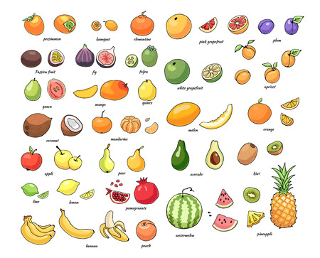 Set of vector illustration of juicy isolated outline colorful fruits.