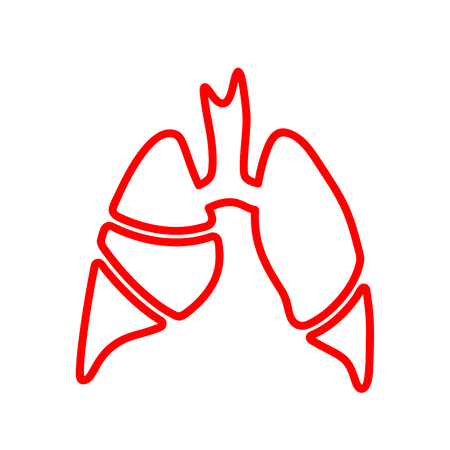 Vector line silhouette medical illustration of human body organ - lungs with trachea.