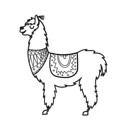 Lama des animaux du Pérou dessinés à la main
