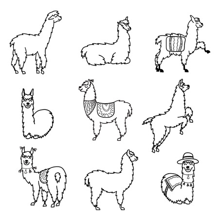Vector set of characters. Illustration of south America cute lama with decorations. Isolated outline cartoon baby llama. Hand drawn Peru animal guanaco, alpaca, vicuna. Drawing for print, fabric.