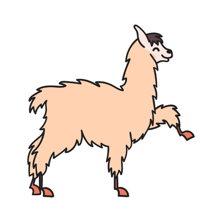 Vector illustration of cute character south America lama. Isolated outline cartoon baby llama.