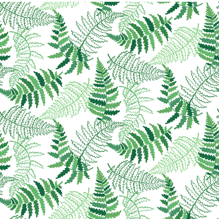 Vector botanical illustration of fern leaf. Isolated outline modern drawing of tropical plant. Set of exotic fern leaves silhouettes. Vector seamless floral green and white pattern