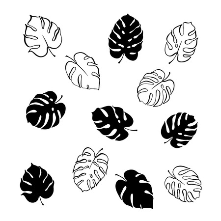 Vector botanical illustration of monstera leaf. Isolated outline modern drawing of tropical plant. Set of exotic palm leaves silhouette. Design for textile, fabric, card, wedding invitation