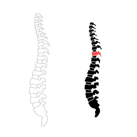 Vector ilustración de silueta aislada columna vertebral humana. Centro médico de dolor de columna, clínica, instituto, rehabilitación, diagnóstico, elemento de icono de cirugía. Diseño de símbolo de icono espinal. Concepto de escoliosis