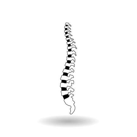 Vector human spine isolated silhouette illustration. Spine pain medical clinic, institute, orthopedic therapy diagnostic center, surgery icon element. Spinal icon symbol design. Concept of scoliosisosis