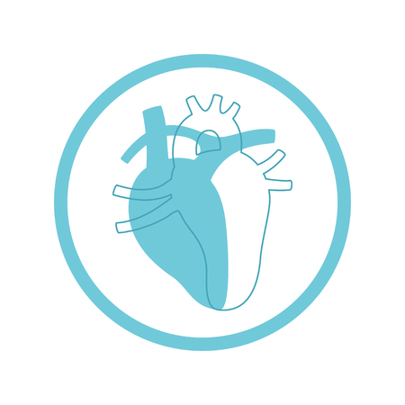 Vector isolated illustration of heart anatomy. Human circulatory system icon. Healthcare medical center, surgery, hospital, clinic, diagnostic icon. Internal donor organ symbol poster design. Donation Illustration