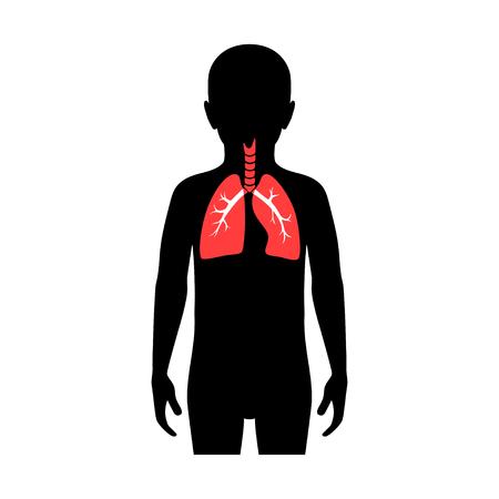 Illustrazione vettoriale isolato di anatomia polmonare nel corpo del ragazzo. Icona del sistema respiratorio umano. Centro medico sanitario, ospedale, logo della clinica. Disegno del manifesto del simbolo dell'organo del donatore del bambino interno. donazione