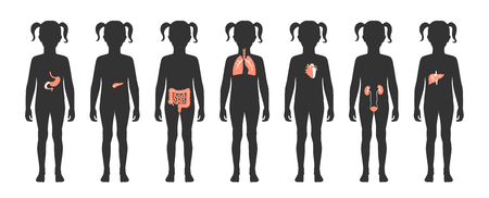 Vector isolated illustration of child internal organs in girl body. Stomach, liver, intestine, bladder, lung, testicle, uterus, spine, pancreas, kidney, heart, bladder icon. Donor medical poster
