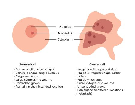 Vector isolated illustration of cell structure: normal and cancer. Medical diagram for poster, educational, science and medical use. Cancer icon or logo