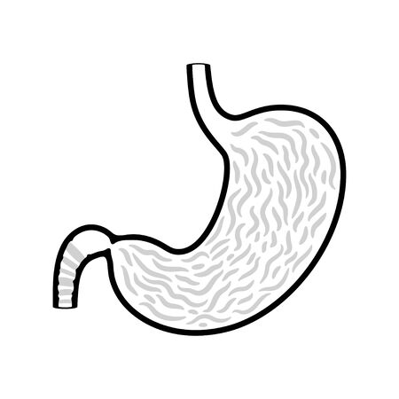 Vector isolated illustration of stomach anatomy. Human digestive system icon. Healthcare medical center, surgery, hospital, clinic, diagnostic  . Internal organ symbol poster design. Donation