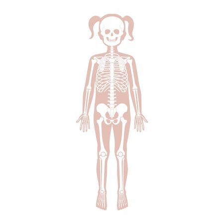 Child girl skeleton anatomy in front, profile and back view. Vector isolated flat illustration of skull and bones in human kid body. Halloween, medical, educational or science banner