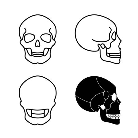 Human skull anatomy. Flat vector medical illustration isolated. Structure of facial skeleton with main parts. Cranium diagram with part bones. Educational, science poster. Front, back and side view.