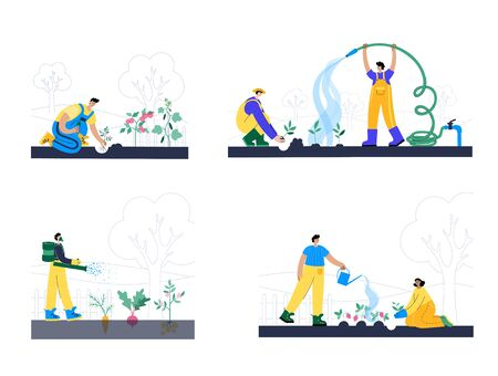 People plant, water and fertilize the sprouts. Growing vegetable, strawberry, potato, beet, tomato, carrot, cucumber. Adult male cartoon action characters. Gardening concept for poster, banner Ilustración de vector