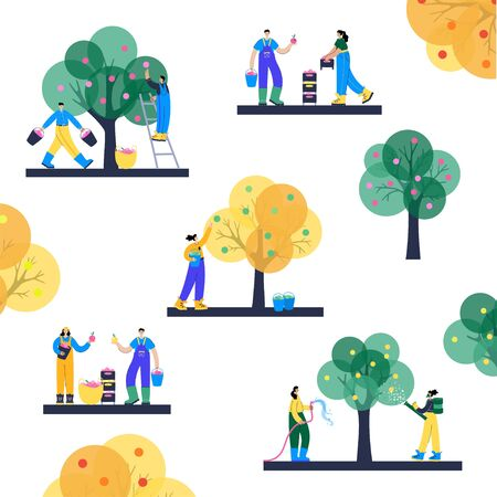 Set of people, picking apples from a tree and transport them using boxes, baskets and buckets. Watering and fertilize. Adult male and female cartoon characters. Gardening concept for poster, banner.