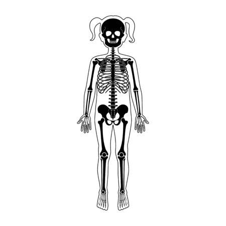 Child girl skeleton anatomy Ilustrace