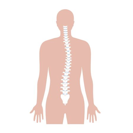 Scoliosis flat vector illustration Illustration