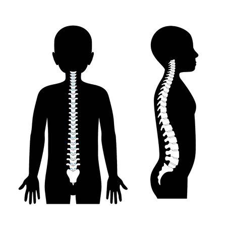 boy healthy spine vector illustration