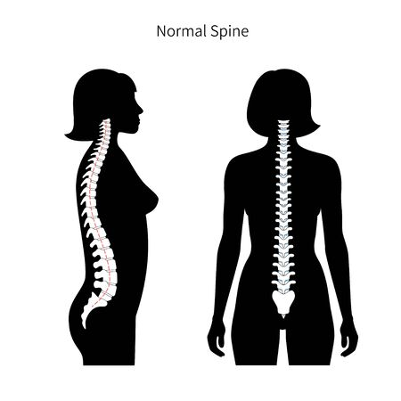 Woman healthy spine vector illustration