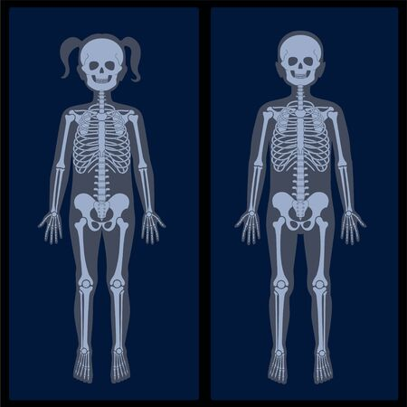 Skeleton x ray Иллюстрация