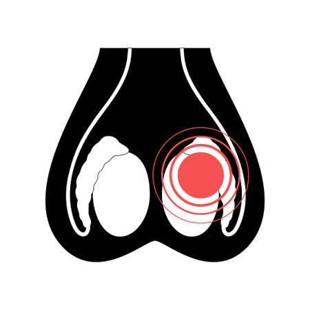 Testis cancer icon and pain in scrotum concept. Tumor in male reproductive system logo. Treatment for man health. Human organ anatomy. Flat vector illustration. Medical poster for clinic.