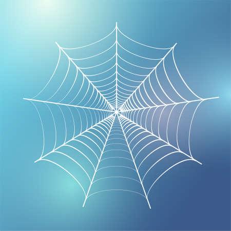 Spider web concept