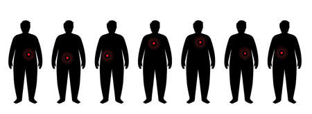 Organs in obese human body