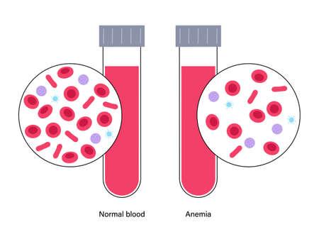 Blood structure concept