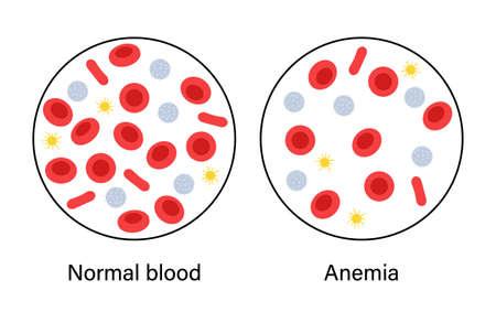Blood structure concept illustration 矢量图像