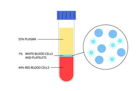 Platelet rich plasma therapy. Blood composition, WBC, RBC and plasma. Medical research in laboratory. Human blood structure and prp infographic. Microbiology test isolated flat vector illustration
