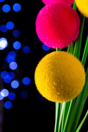 glistening: Flowers glistening with bokeh.