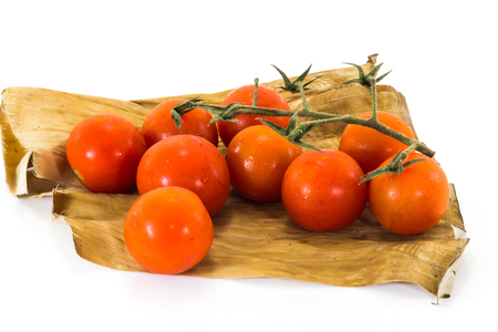 spicey: Fresh tomatoes from nature