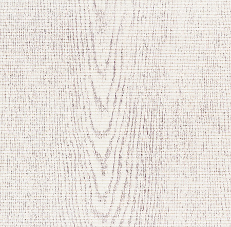 ancient paper: Grunge background with texture of paper