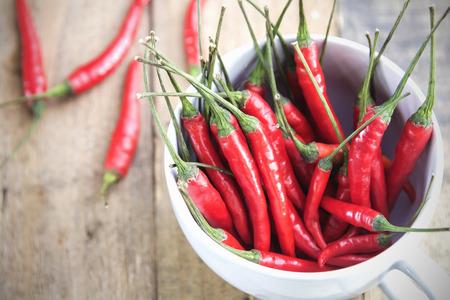 red chilli: Closeup fresh red chilli farm.