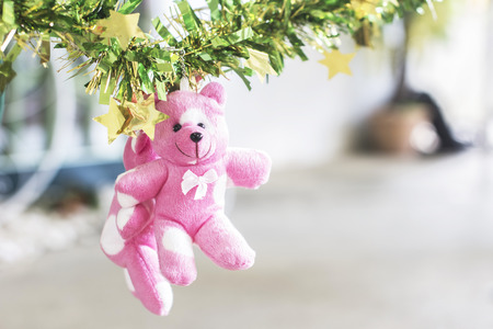pink teddy bear: Two classic small pink teddy bear.