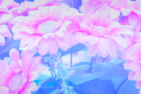 Fake flowers abstract background.