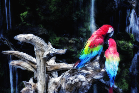 filters: Green-winged Macaw on a branch. Watercolor Photoshop filters.