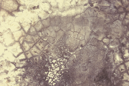 cement floor: Pattern abstract background cement floor.