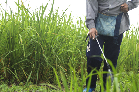 Blurred spraying weed pesticide in agriculture and growing organic food on the mountain. 스톡 콘텐츠
