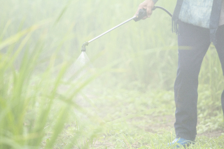 Blurred spraying weed pesticide in agriculture and growing organic food on the mountain. Stock Photo
