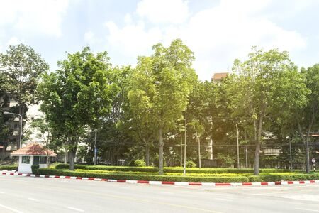 The tree garden in the street reduces toxic pollution.