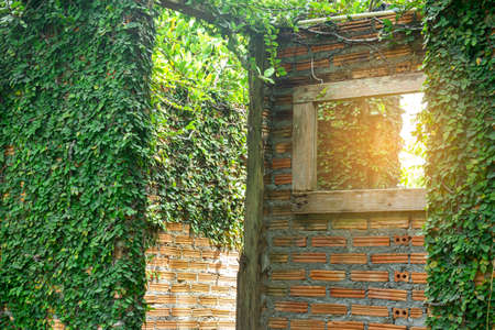 The outdoor bathroom wall is made of brown bricks covered with green trees. 스톡 콘텐츠