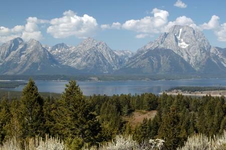 the majesty: The Majesty of Grand Teton National Park