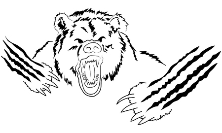 garra: cabeza de oso enojado. Grizzly enojado, poderoso depredador, la fuerza y ??la vida silvestre, la garra y mamíferos Vectores