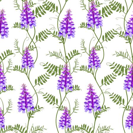 convolvulus: Seamless pattern wildflowers bindweed bird vetch canada pea.