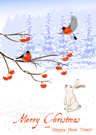 Vector Illustration Christmas and New Year Greeting Card with Bullfinch Birds on a Rowan Tree Branch and White Hare collect berries in winter forest