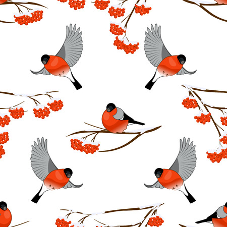 Vector illustration Seamless background with bullfinches and branch of rowan