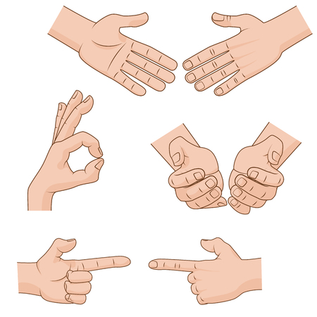 handbreadth: Set of cartoon Hands Icons for business concepts. Vector illustration Illustration
