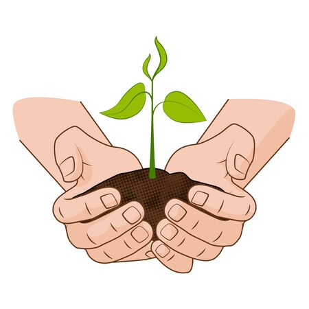 grow business: Growing plant in handful soil in hands. Comic style grow business concept vector illustration web infographics.